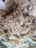 Hilados de algodón de corte de fibra Máquina de corte de la máquina