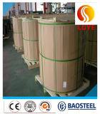Approvisionnement directement 310S de constructeur de bobine de plaque d'acier inoxydable