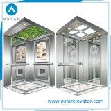 Cabina del elevador del pasajero de Desinged del estilo del asunto del sistema de la cabina (OS41)