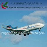 Service d'expédition bon marché de transitaire de transport de cargaison de fret aérien de Chine vers le Nicaragua