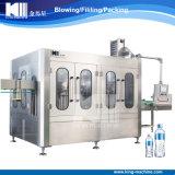 Embotelladora de la planta de agua plástica de la botella