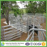 6 comitati ovali portatili dell'iarda del bestiame delle rotaie