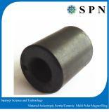 Gli anelli permanenti del magnete del ferrito hanno sinterizzato il magnete multipolare del motore