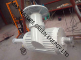 30kw трехфазный генератор AC Pm с весом 920kg