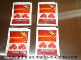 Машина упаковки автоматического шампуня Chili Ketchup томатного соуса Sjiii-S300 заполняя