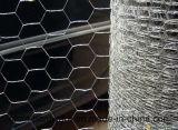 الصين مصنع إمداد تموين [إلكترو] يغلفن [وير مش] سداسيّة