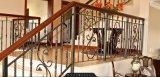 Dekorativer /Wrought-Eisen-Zaun des bearbeiteten Eisens, der Maschine bildet