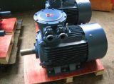 Yb2 Flameproof Electric Motor (80-355フレーム)