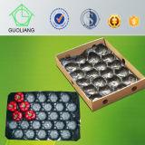 Fabricantes plásticos pretos brancos de empacotamento da bandeja da fruta por atacado popular do caqui