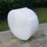Máquina de burbujas que hace la película (una extrusora) de 2 capas (CE) Ftpe-600