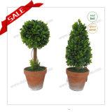 Albero artificiale del Topiary di alta qualità, albero artificiale del Topiary di tatto reale