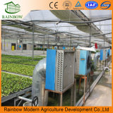 모양 Aquaponics 성장하고 있는 시스템을%s 가진 농업 온실