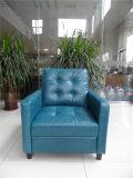 Sofá do couro genuíno da sala de visitas (C456)