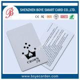 Cartão de sociedade geado do negócio com listra magnética