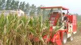 La meilleure petite machine de moissonneuse de maïs à vendre