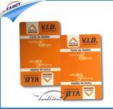 Tarjeta de visita plástica de la tarjeta del precio bajo de la fuente de Seaory