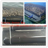 Fabrik HDPE Plastikineinander greifen für Auster Grwoing heraus 9*9mm