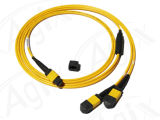 High Quality Cheap MPO-MPO Fiber Patch Cord