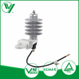 Dispositif protecteur de saut de pression électrique du produit 30kv