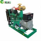 El generador silencioso del gas natural de 30 kilovatios con CE aprobó