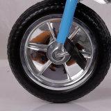 La bici de los cabritos juega el triciclo de los cabritos de la rueda del marco tres del metal