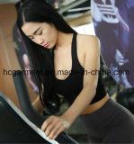 Sportswear para mulheres, roupa Running, desgaste da ioga, sutiã dos esportes das mulheres