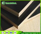 WBP imprägniern Film gegenübergestelltes Furnierholz-konkretes Verschalung-Furnierholz für Aufbau