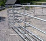 家畜は牛ヒツジか馬のための農場の塀のゲートの守備につく