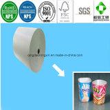 Nahrungsmittelgrad einer seitliches PET überzogenes Papier für das Verpacken der Lebensmittel
