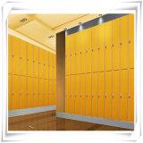 grano de madera HPL el 100% de 1220*2440m m impermeable