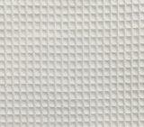 Tela de la galleta del algodón de la albornoz del hotel