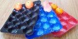 Form-Masse und Vakuum gebildete Blase, die pp.-Tellersegmente für das Obst- und GemüseVerpacken verpacken