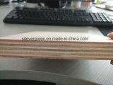 Furnitur Verbrauch-wasserdichtes Furnierholz