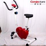 Em forma de coração Fitness Bike / Indoor Exercise Machine / Exercício físico Bicycle Trainer