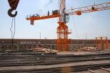 最大MingweiのタワークレーンQtz80 (6010)。 ロード6t/Tipロード: 1.0t/Jib: 60m