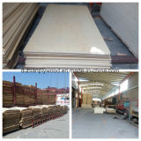 Contre-plaqué de bonne qualité de placage de bois dur de peuplier