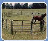 De op zwaar werk berekende Omheining van de Pijp van het Staal van het Landbouwbedrijf voor Paard/Vee met Hete Ondergedompelde Galvanized (Sf-001)