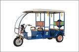 助手席の乗客の三輪車が付いている電気三輪車