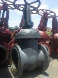 鋳鉄Pn40 Dn200のGOSTのゲート弁
