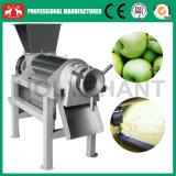 공장 가격 직업적인 과일 Juicer