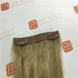 100%毛のWeft人間の毛髪の拡張のブラジルのRemyのヘアークリップ