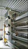 Equipamento de alimentação da camada automática do baixo custo de jogo cheio para gaiolas da camada
