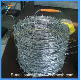 Горячая окунутая гальванизированная колючая проволока Bwg 14X16 колючей проволоки /PVC Coated