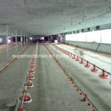 Automatic Poultry Farm Equipment for Broiler Production