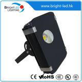 Fornecedor elevado da lâmpada de inundação de Brigelux IP65LED do lúmen