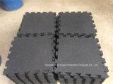 Sport variopinti di ginnastica che collegano le mattonelle di pavimento di gomma