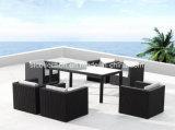 6 vectores de Seater/sillas al aire libre (SC-B8894)