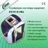 Máquina de enfriamiento portable de la belleza de la pérdida de peso de Bd06A Cryolipolysis
