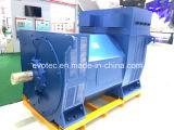 Evotec 1000kw 1800rmp 60Hz doppelte Peilung Wechselstrom-schwanzlose Generator-Hersteller