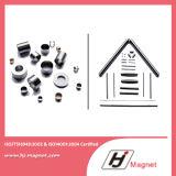 Сильный подгонянный магнит кольца с процессом производства высокого качества